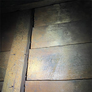 阿弥陀堂修復情報 宮殿修復Vol.2「宮殿の調査」